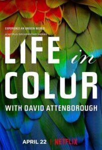ดูซีรี่ย์สารคดี Life in Color with David Attenborough (2021) ชีวิตมีสีสันกับเดวิด แอทเทนเบอเรอห์