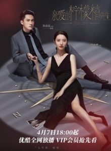 ซีรี่ย์จีน Plot Love (2021) แผนรักลวงใจ